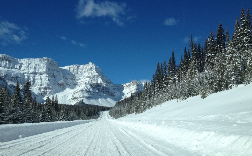 The Epic Icefield Parkway : Exits