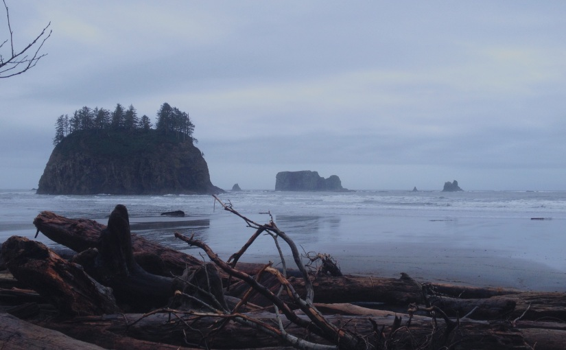 The 101 – The Olympic Peninsula